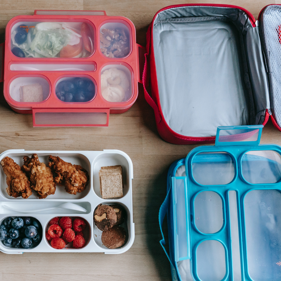 Pink and Blue reusable Lunch boxes